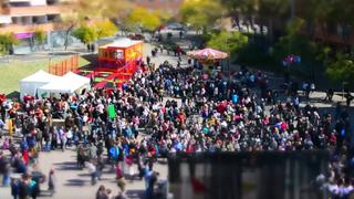 Día de Andalucía en Sant Boi