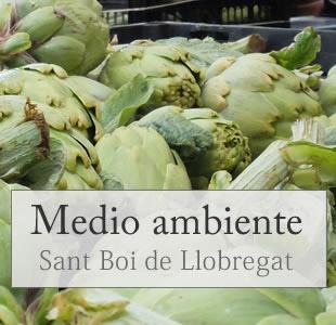 medioa ambiente en sant boi, barcelona