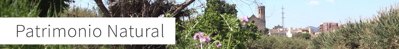 Patrimonio natural de Sant Boi